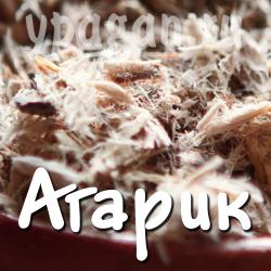 Агарик (лиственничная губка) 100 гр