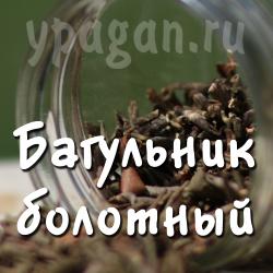 Багульник болотный 50 гр