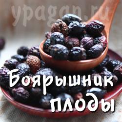 Боярышник плоды 100 гр