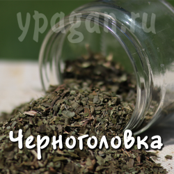 Черноголовка обыкновенная трава 50 гр