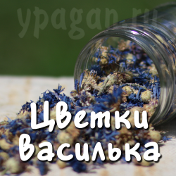 Василёк синий цветки 30 гр