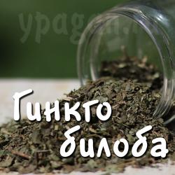 Гинкго билоба 50 гр