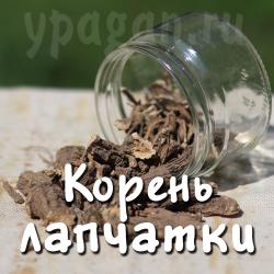 Лапчатка белая корень 100 гр