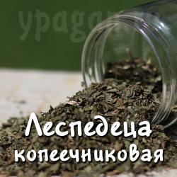 Леспедеца 50 гр