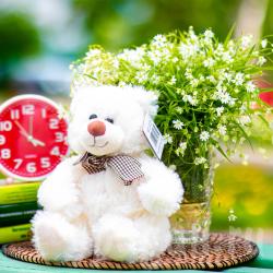 Мишка белый игрушка для подарка