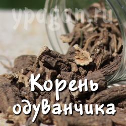 Одуванчик корень 50 гр