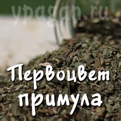 Первоцвет (примула) трава 50 гр
