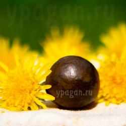 Прополис пчелиный натуральный 24 гр