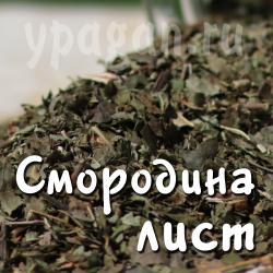 Смородина лист 50 гр
