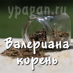 Валериана корень 50 гр