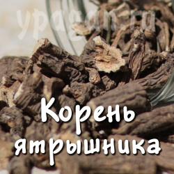 Ятрышник корень 100 гр