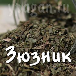 Зюзник трава 50 гр